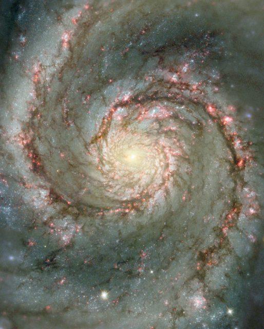 Brazos espirales de M51 (NGC 5194). Se aprecian las agrupaciones de estrellas jóvenes, las regiones HII (rosadas) y las nubes de polvo interestelar (NASA/STScI/AURA/N. Scoville/Caltech)