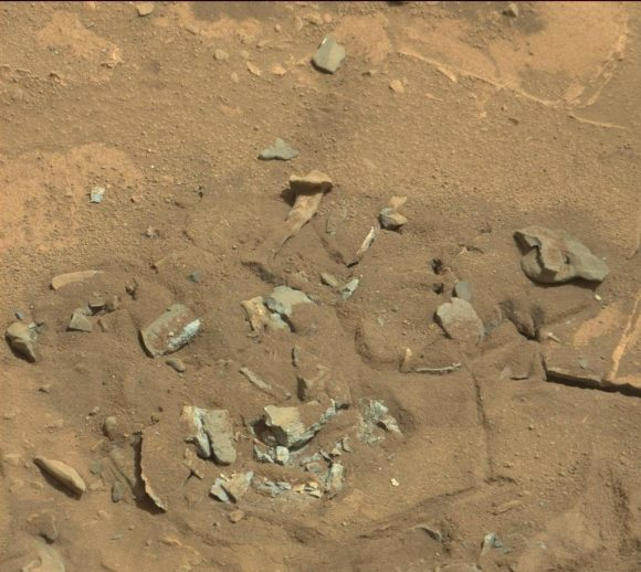 Mars-fossil-thigh-femur-bone-like-Curiosity-rover-mastcam-0719MR0030550060402769E01_DXXX-br2
