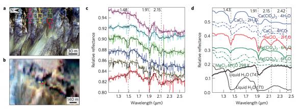 Resultados de las observaciones de CRISM del cráter Palikir (L. Ojha et al.).
