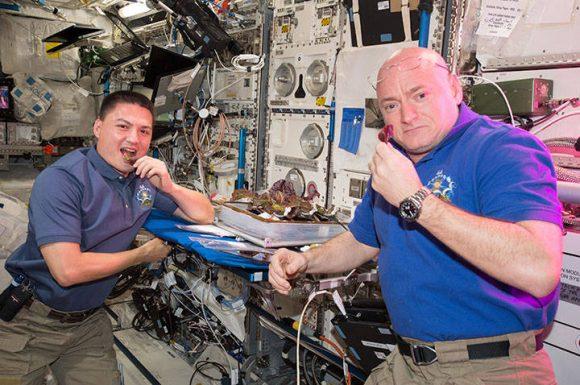 Scott Kelly (derecha) y Kjell Lindgren comen los frutos de su trabajo (NASA).