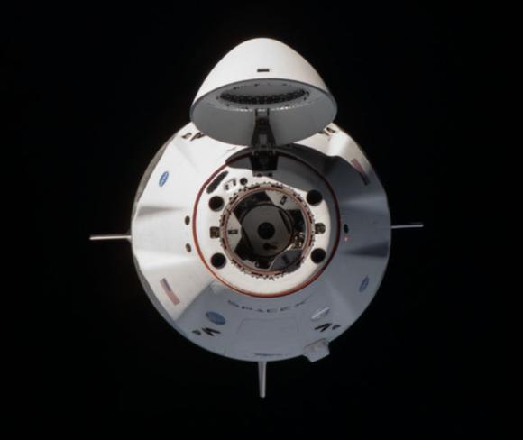 Acoplamiento de la Crew Dragon Resilience con la ISS: ¿cuánto tarda en acoplarse una nave con la estación espacial?